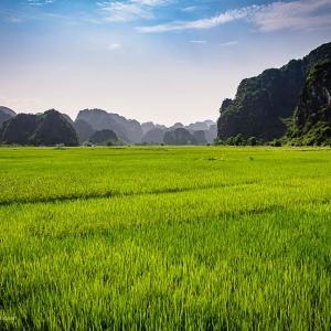 Việt-Nam_Hanoi_Tam_Coc19