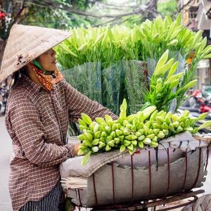 Việt-Nam_Hanoi_Tam_Coc3