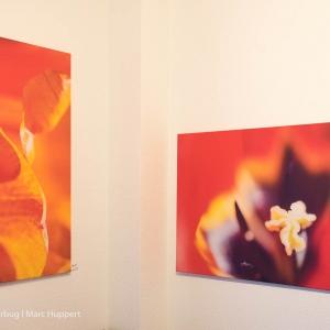 Ausstellung_Property meets Photography15.jpg
