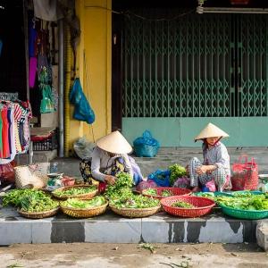 Việt-Nam_Hội-An_Mỹ-Sơn20