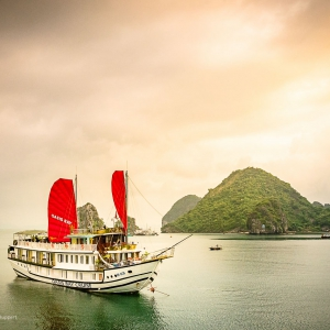 Việt Nam3